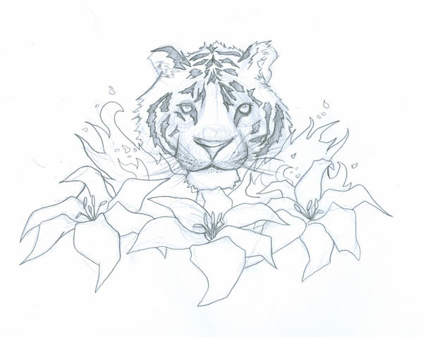 tiger lily outline 0001 by experiment48602