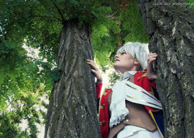 APH Prussia: In the Branches