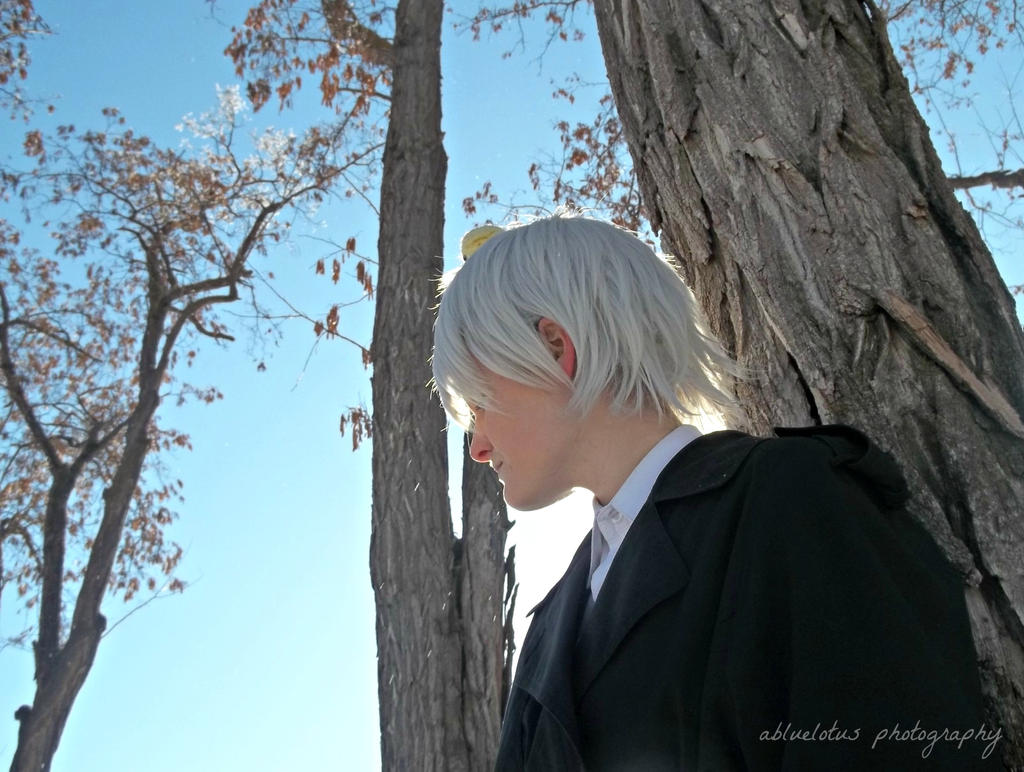 APH Prussia: Cold Heart