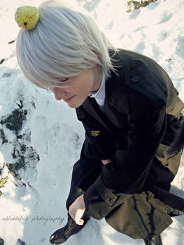 APH Prussia: Late Afternoon in the Snow