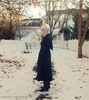 APH Prussia: Evening Stroll