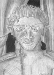 The Elven General by bigdave2080