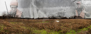 The Hunters Panorama