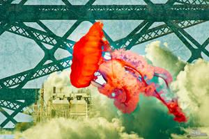 Enviromental Jellyfish by SBibb