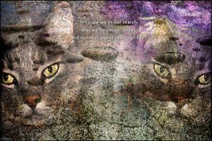 Cat Wisdom by SBibb