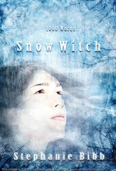 Snow Witch Ebook Cover