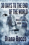 30 Days to the End of The World - Book Cover
