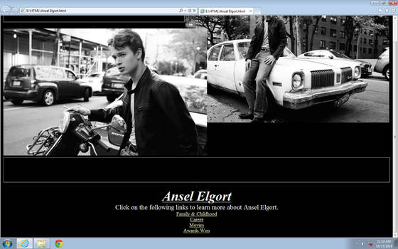 Ansel Website by victoria-gv