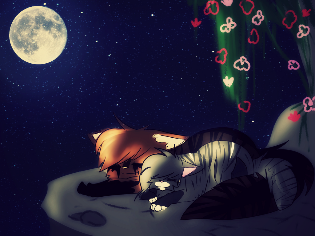 I Love You Wallpaper Dow : DOW: Love stories Start out with Stars cONTEST by qonqq on DeviantArt