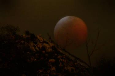 Blood Moon Over Harbison Canyon