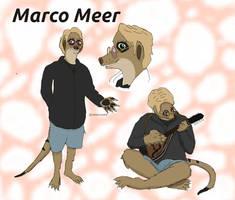 Marco Meerkat Reference Sheet