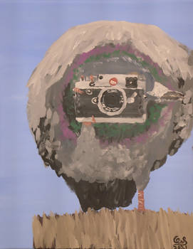 Birds Eye view: Pigeon with leica