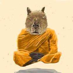 Capybara Monk meditating
