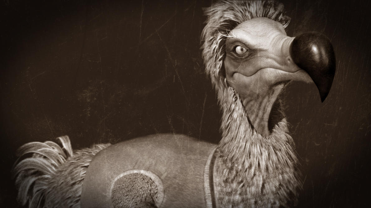 Dodo Bird Dodo bird by skdzinesDodo Bird Sightings