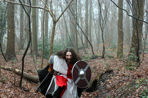 Warriors in the Woods 6 by Dewfooter