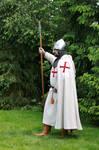 Crusader 8