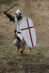 Crusader knight charging
