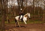 Mounted knight training