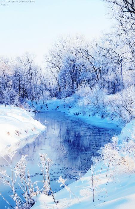 A Winter Scene by renaboo
