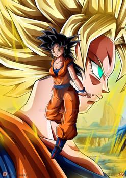 Patreon's July Reward : She-Goku