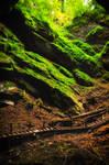 Scarisoara ice cave (Romania)
