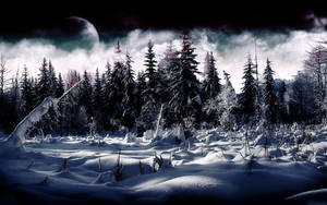 Winter by Asylyx