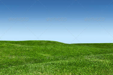 Green Lawn And Blue Sky