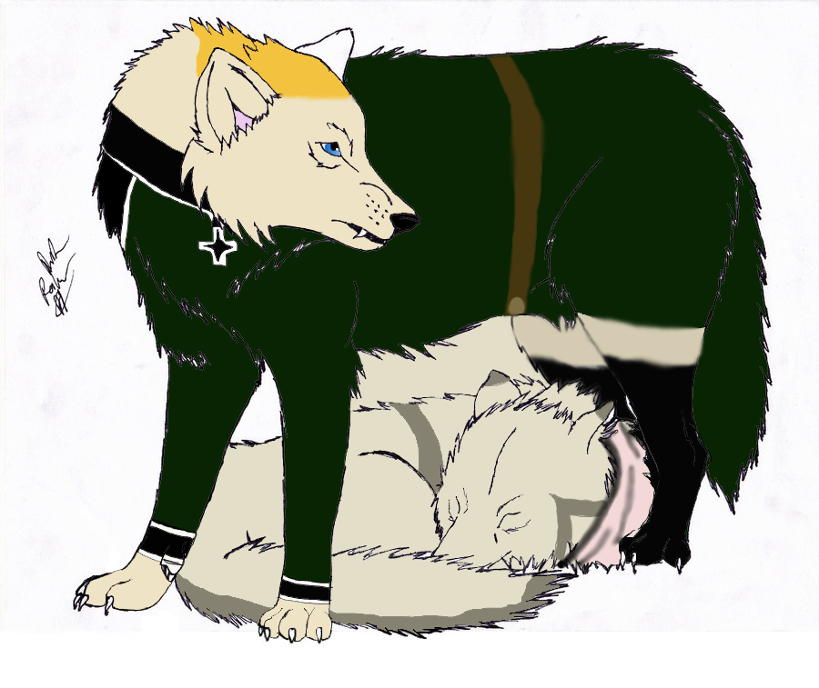 Wolf Germany germany wolf x russia wolf by hetalia roleplayer on deviantart