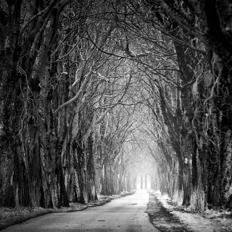 Dark Alley by Matthias-Haker