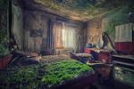 A Bed of Moss II
