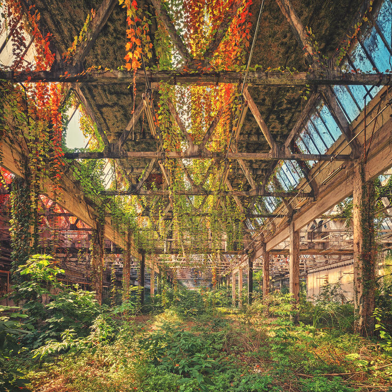 Industrial Autumn by Matthias-Haker