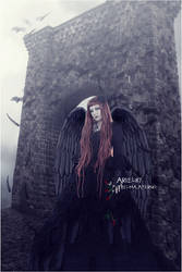Through Hell by Ariel87