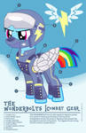 Wonderbolt Combat Gear Infographic
