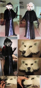 Wolf Mage Costume