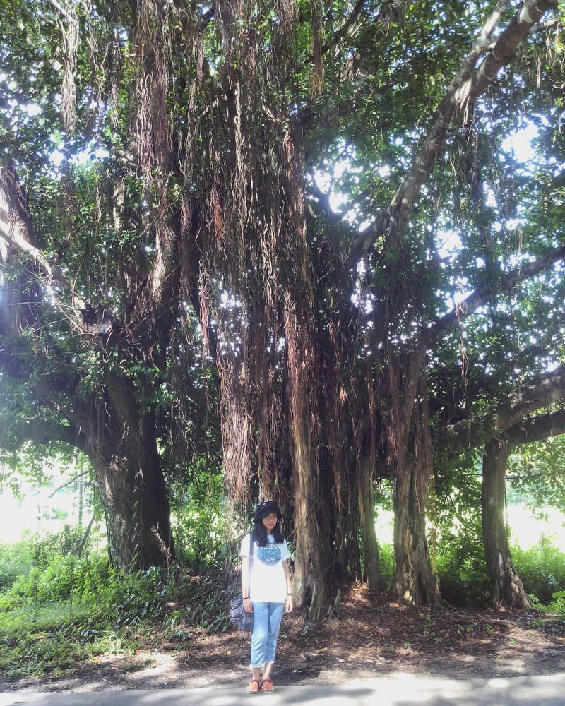 Balete Tree by chiyokuhime