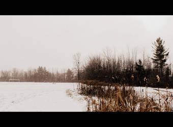 Wanderings 2 by TheAmazingfulOne