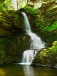 Bushkill Falls 59