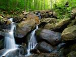 Amicolola Falls 4