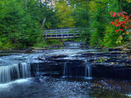 Ricketts Glen State Park 8