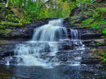 Ricketts Glen State Park 10