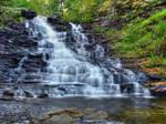 Ricketts Glen State Park 13