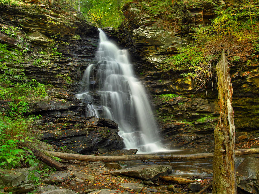 Ricketts Glen State Park 29 by Dracoart-Stock