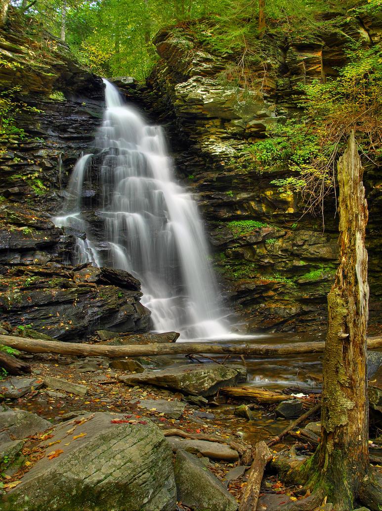 Ricketts Glen State Park 30 by Dracoart-Stock