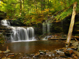 Ricketts Glen State Park 39 by Dracoart-Stock