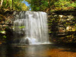 Ricketts Glen State Park 51