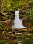 Ricketts Glen State Park 55
