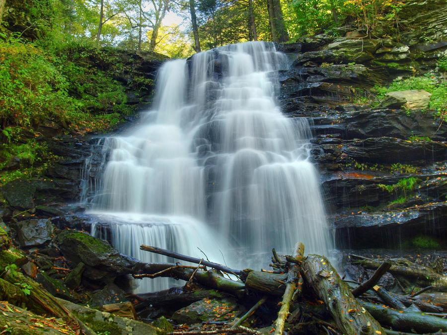 Ricketts Glen State Park 58