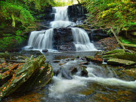Ricketts Glen State Park 66 by Dracoart-Stock