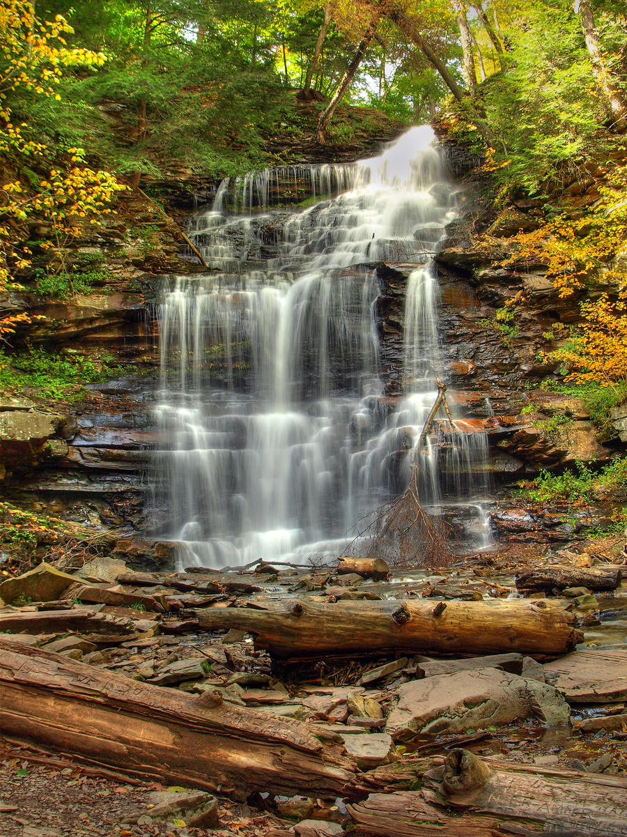 Ricketts Glen State Park 81