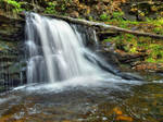 Ricketts Glen State Park 88
